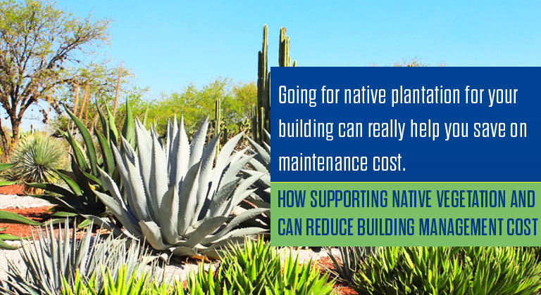 How supporting native vegetation and can reduce building management cost